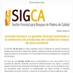 Boletín 6:  Jornada técnica: La gestión forestal orientada a la obtención de productos de calidad en masas de pino marítimo